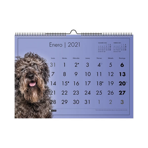 CALENDARIO 2021, SOBREMESA, PARED A3, FAMILIAR